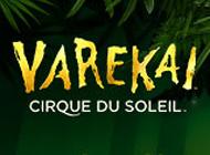 Varekai_web_thumb.jpg